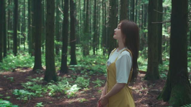 korean woman at saryeonisupgil forest on the way to bulgeunoreum hill in jeju island, korea - postura video stock e b–roll