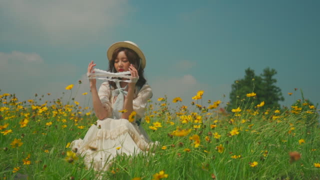 korean woman sitting on the cosmos flower field in jeju island, korea - cat's cradle stock videos & royalty-free footage