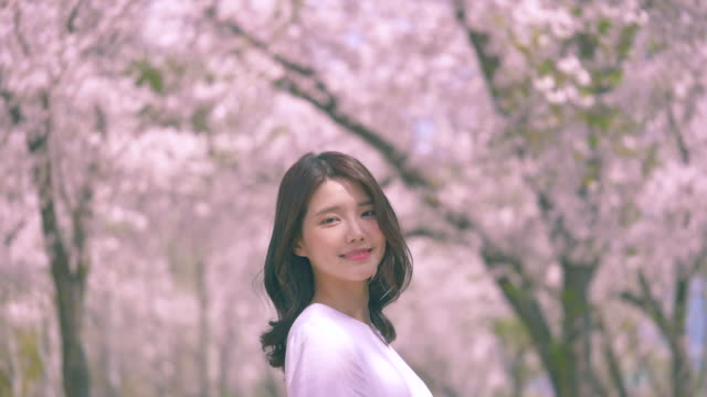 korean woman smiling under cherry blossom trees - east asian ethnicity stock videos & royalty-free footage