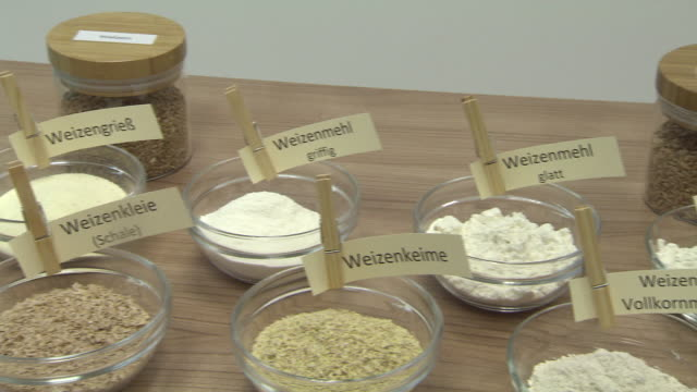 vídeos de stock, filmes e b-roll de korn zum mehl - different types of flour from corn in lower austria - crachá