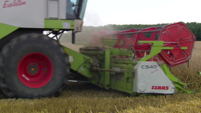 stockvideo's en b-roll-footage met korn zum mehl - harvesting a cornfield in lower austria - lower austria