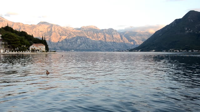 kotor bay, montenegro (hd) - perast stock videos and b-roll footage