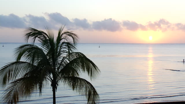 ws kourou at sunset / kourou, french guyane, french guyane - french guiana stock videos & royalty-free footage
