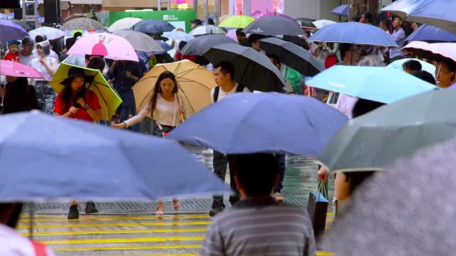 kowloon streets - umbrella stock videos & royalty-free footage