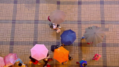 vídeos de stock, filmes e b-roll de kowloon streets - mala de rodinhas