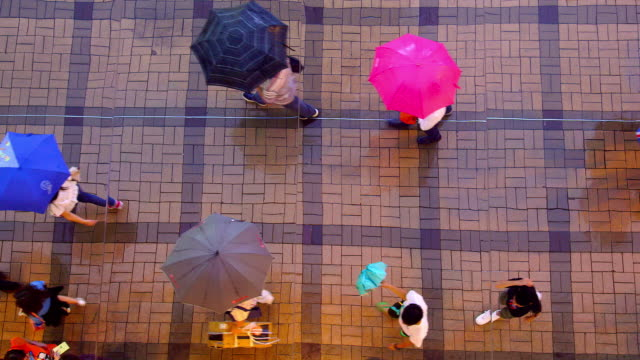 kowloon streets - umbrella stock videos and b-roll footage