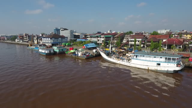 kratom harvesting and processing in pontianak west kalimantan indonesia on wednesday may 2 2018 - kalimantan stock videos and b-roll footage