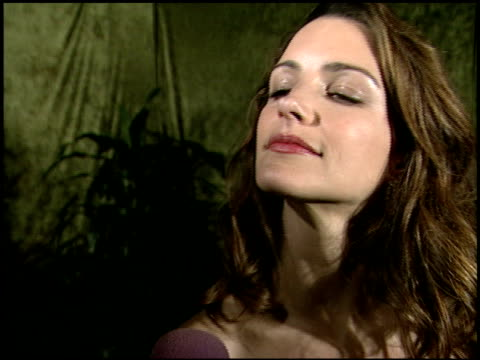 kristin davis at the 2000 hbo emmy party at spago in beverly hills california on september 10 2000 - kristin davis stock videos and b-roll footage