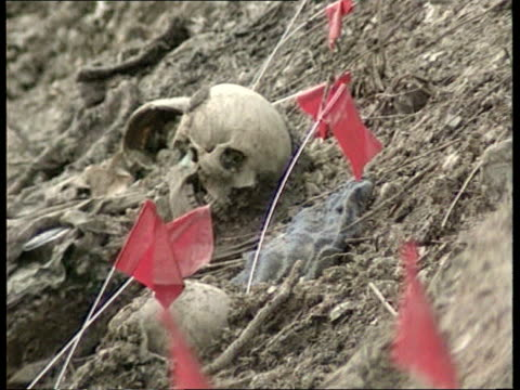 crime/ conflict krstic charged with war crimes at hague srebrenica lib several shots skeletons of muslim victims of massacre laying in mass grave - bosnia and hercegovina stock videos & royalty-free footage