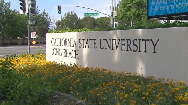 california state university, long beach campus. - long beach california stock videos & royalty-free footage