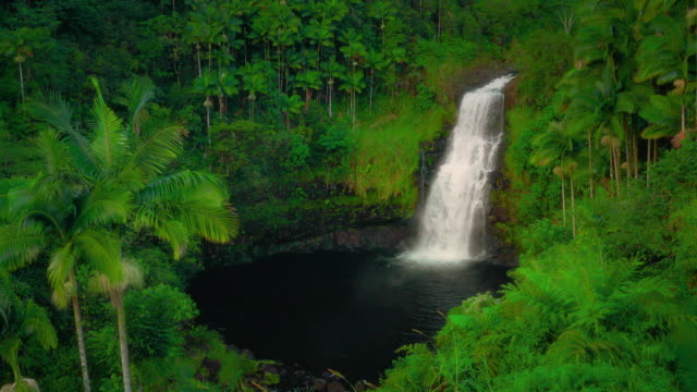 4k kulaniapia falls - waterfall big island hawaii near hilo - hawaiianische kultur stock-videos und b-roll-filmmaterial