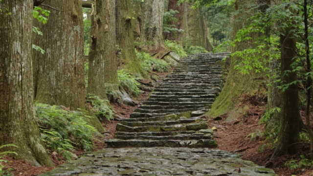 kumano kodo (world heritage) - steps and staircases stock videos & royalty-free footage