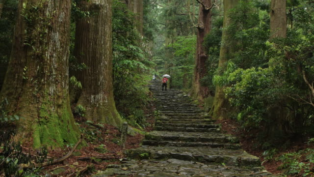 kumano kodo (world heritage) - ultra high definition television stock-videos und b-roll-filmmaterial