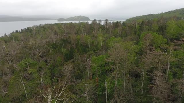 Kunashir Island (Kuril Islands)
