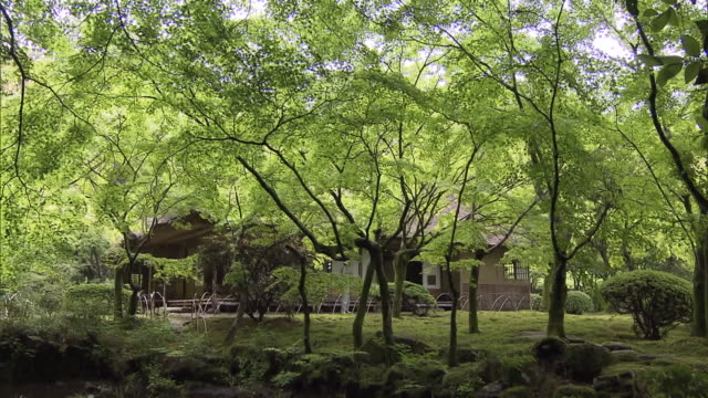 """""""kunenan"""" is a name of villa and the garden with the width of 6800 square meters it was built by yataro itami a famous entrepreneur in saga... - green background stock videos & royalty-free footage"""