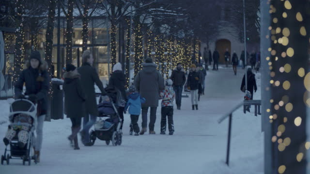 kungstradgarden park walkway in snowy stockholm, sweden - svezia video stock e b–roll