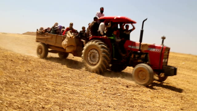 kurdish photojournalist meets yazidi refugees travelling from mount sinjar to syria tractor along with people in trailer - photojournalist stock videos & royalty-free footage
