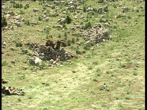 pkk kurdish soldiers in grassy slopes fire from rocket launchers at targets northern iraq 1991 - kurdistan workers party stock videos & royalty-free footage