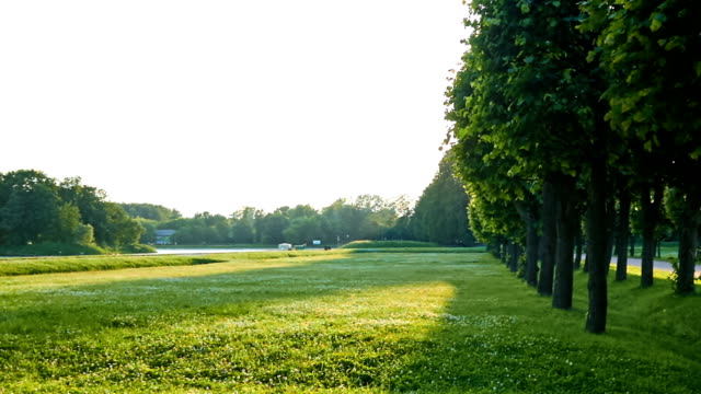 kuskovo park - formal garden stock videos & royalty-free footage