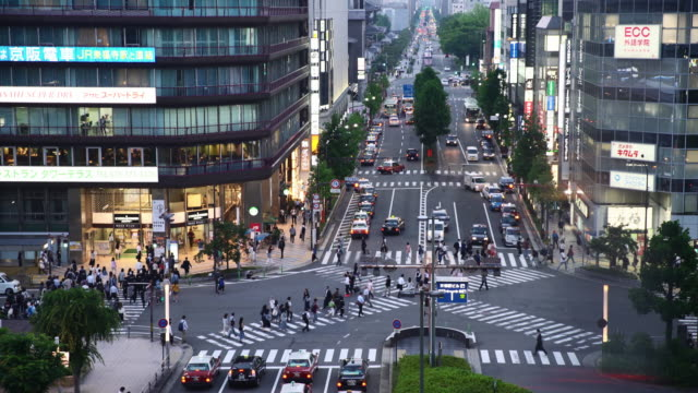 T/L Kyoto City crossing