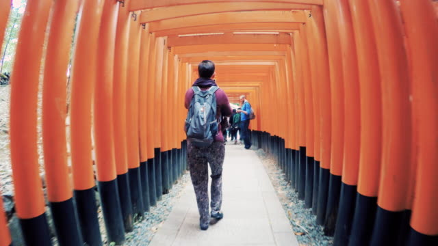 kyoto fushimi inari - tourist stock videos & royalty-free footage