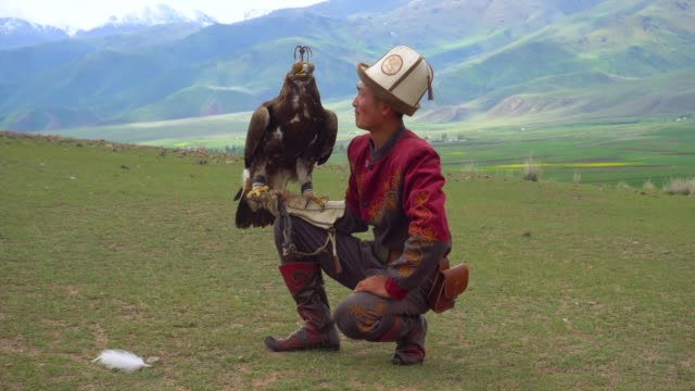 kyrgyz hunter  eagle - hunting stock videos & royalty-free footage