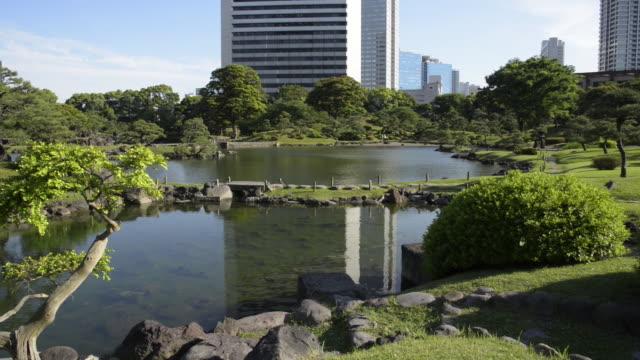 kyu shiba rikyu garden, tokyo - formal garden stock videos & royalty-free footage