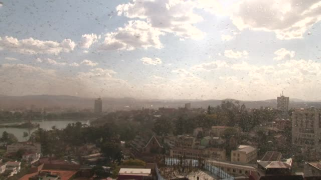 la capital de madagascar se cubrio el jueves con una nube de langostas una plaga frecuente en la isla que se intensifica con la humedad y las altas... - east africa stock videos & royalty-free footage