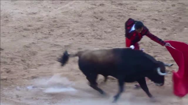 la falta de publico y la creciente oposicion de gran parte de la sociedad pone en peligro la practica del toreo en paises como colombia donde... - bullfighter stock videos & royalty-free footage
