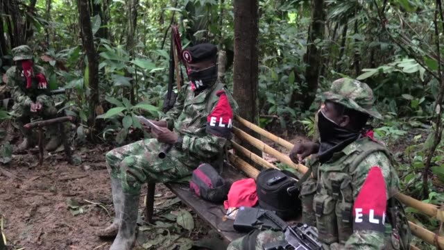 La guerrilla del ELN y las fuerzas armadas colombianas comenzaron el domingo una inedita tregua tras medio siglo de conflicto