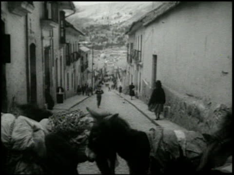 stockvideo's en b-roll-footage met la paz - 4 of 16 - la paz filmtitel