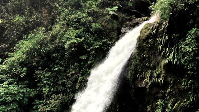 la paz waterfalls in costa rica - san jose costa rica stock videos & royalty-free footage