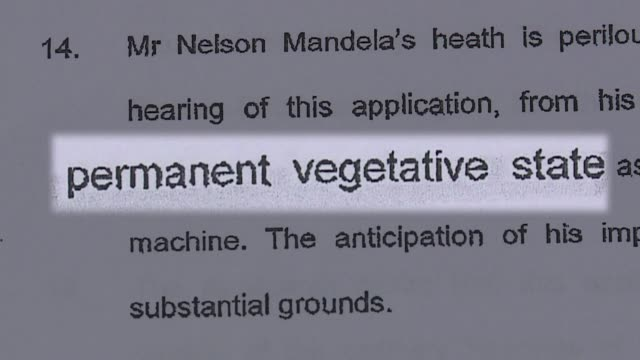 vídeos de stock, filmes e b-roll de la presidencia sudafricana desmintio el jueves por la noche que el expresidente nelson mandela se encuentre en estado vegetativo voiced festejo... - processo vegetal