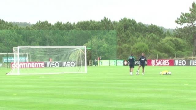 La seleccion portuguesa tendra que jugar el amistoso del sabado ante Grecia sin Cristiano Ronaldo ni Pepe