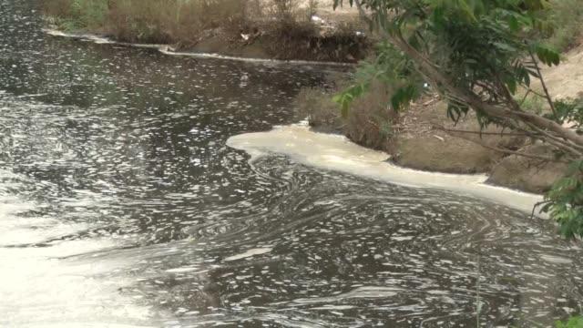 vídeos y material grabado en eventos de stock de la sequia y la contaminacion del rio lempa en guatemala el salvador y honduras estan afectando la produccion de alimentos de las comunidades... - llevar