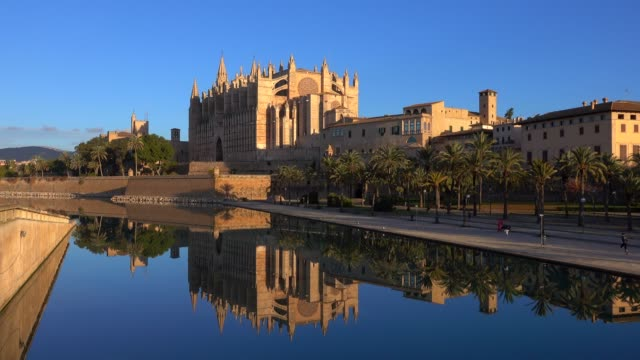 la seu cathedral with royal palace, parc de la mar, palma de mallorca, mallorca (majorca), balearic islands, spain, mediterranean, europe - balearic islands stock videos and b-roll footage
