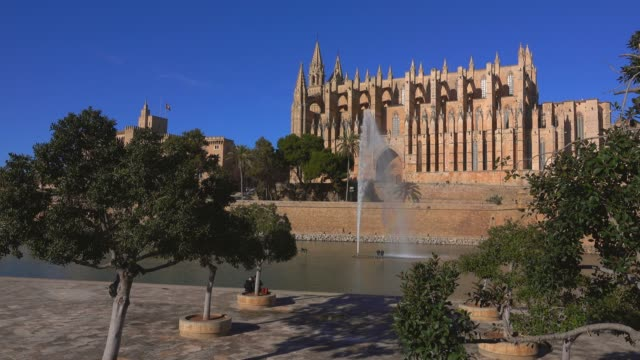 la seu cathedral with royal palace, parc de la mar, palma de mallorca, mallorca (majorca), balearic islands, spain, mediterranean, europe - palma stock videos & royalty-free footage