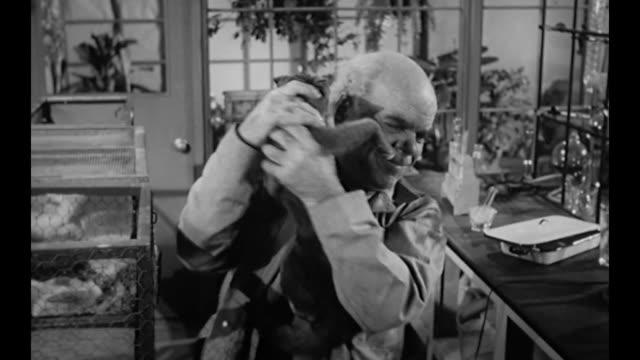 vídeos y material grabado en eventos de stock de 1959 lab cat goes mad forcing scientist to break its neck and dispose of body - dead animal