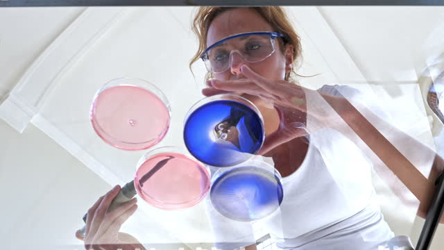 lab experiment - safety glasses stock videos & royalty-free footage