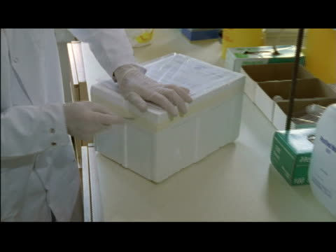 / lab technician at national institute for medical research opening postal package revealing styrofoam cooler containing samples of influenza virus... - cool box stock videos & royalty-free footage