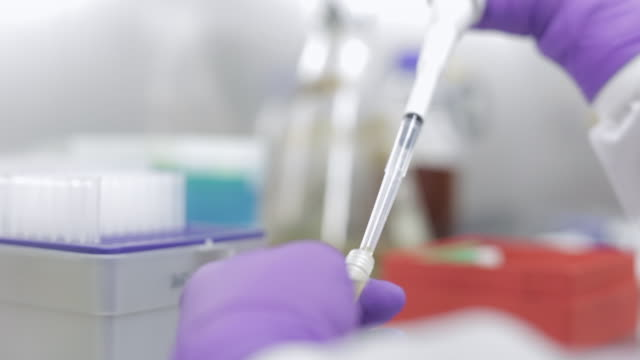 vídeos de stock, filmes e b-roll de lab technician extracting solution with an autoclavable pipette - amostra científica