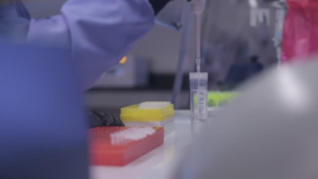 vídeos de stock, filmes e b-roll de lab technician transferring solution with an autoclavable pipette - amostra científica
