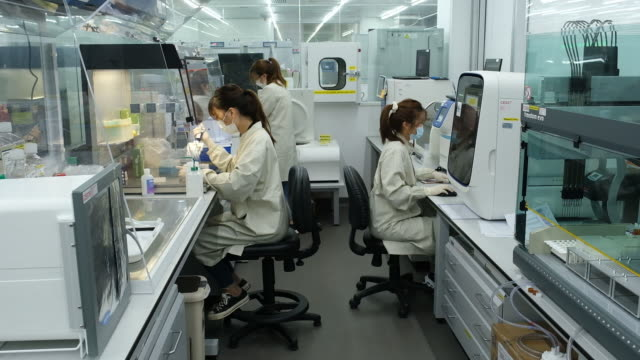 lab technicians collects saliva samples for covid-19 tests at prenetics laboratory, in hong kong, china, on friday, july 31, 2020. - biotechnology stock videos & royalty-free footage