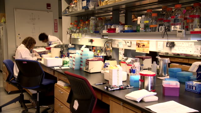 lab technicians walk around tables and shelves. - apron stock videos & royalty-free footage