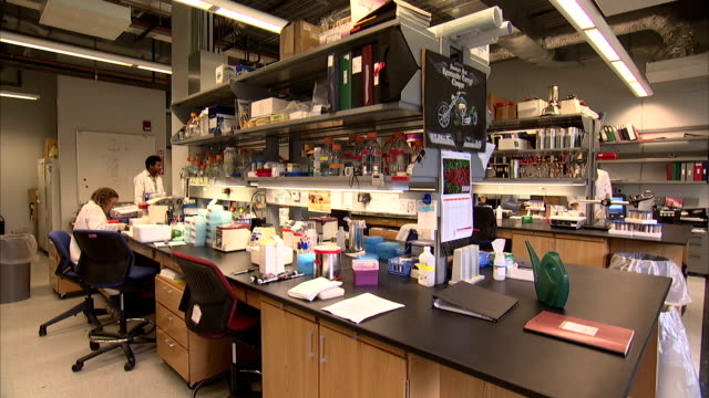 lab technicians walk near a colleague. - apron stock videos & royalty-free footage