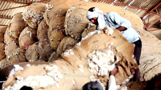 labor working in wool textile factory - sheep shearing stock videos & royalty-free footage