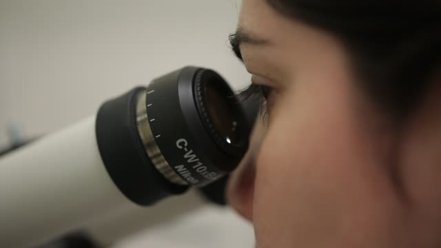 laboratory and science - laboratory stock-videos und b-roll-filmmaterial