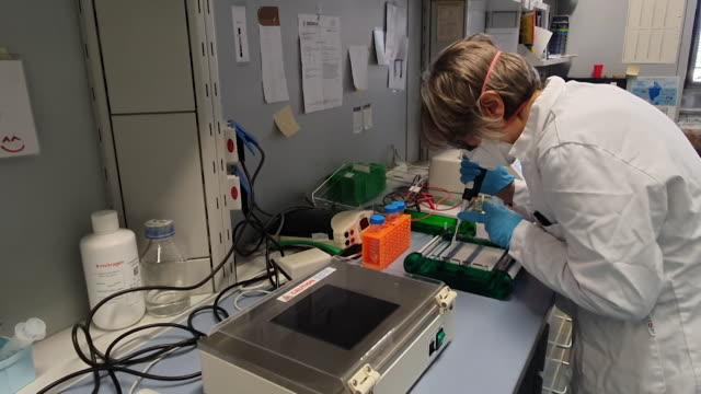 laboratory in rome working on genetic vaccine for coronavirus covid-19 - epidemiology stock videos & royalty-free footage