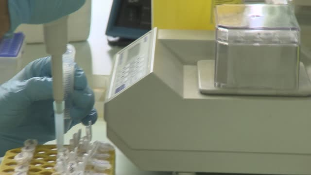 laboratory research - pipette and test tubes - stem cell stock videos & royalty-free footage