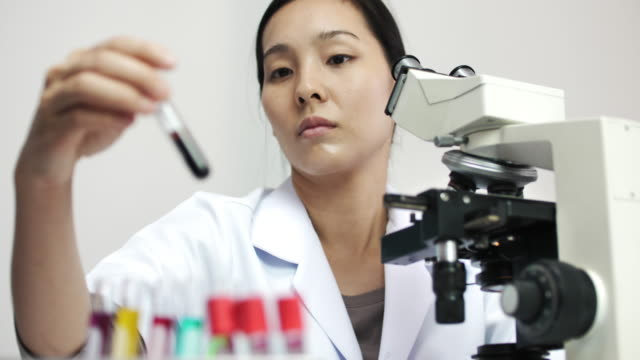 laboratory technician - assistant stock videos & royalty-free footage